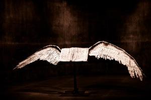 """Bird At Rest"" Thomas Hawk"