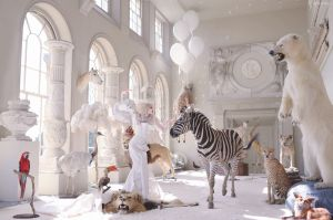 The White Witch Awakening By: Miss Aniela